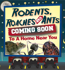 Roaches, Rodents & Ants: Coming Soon to a Home Near You