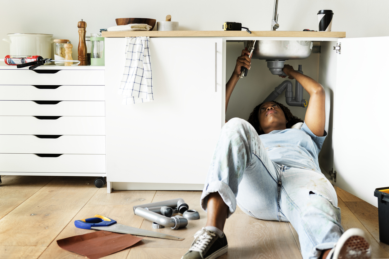 Home Improvement Projects for Pest Prevention
